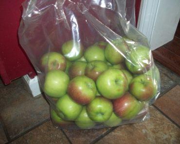 Farmer Friday Finds: $8 Bushel of Apples!