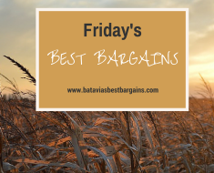 Friday's Best Bargains!