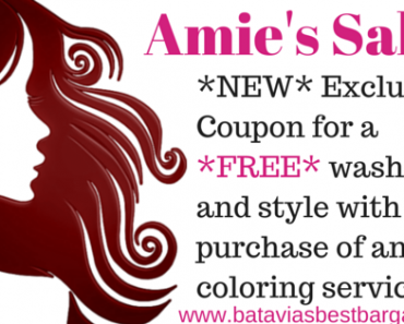 amies salon batavia ny