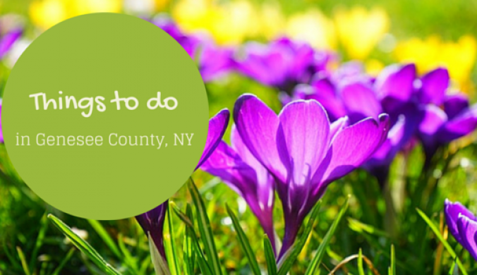Things to do in Genesee Count,y NY