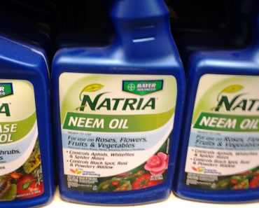natria neem oil deal and coupon