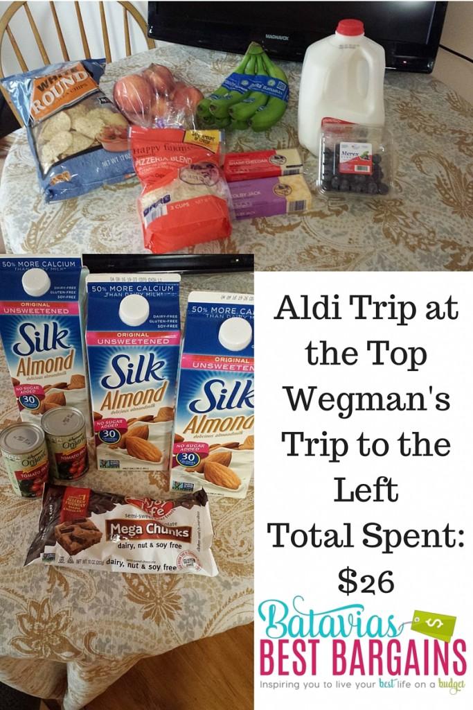 aldi and wegmans shopping trip