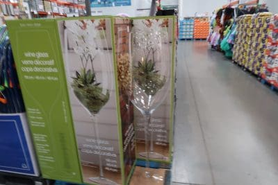 decorative wine glass at costco